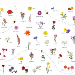 פלייסמט פרחי ישראל דו-צדדי