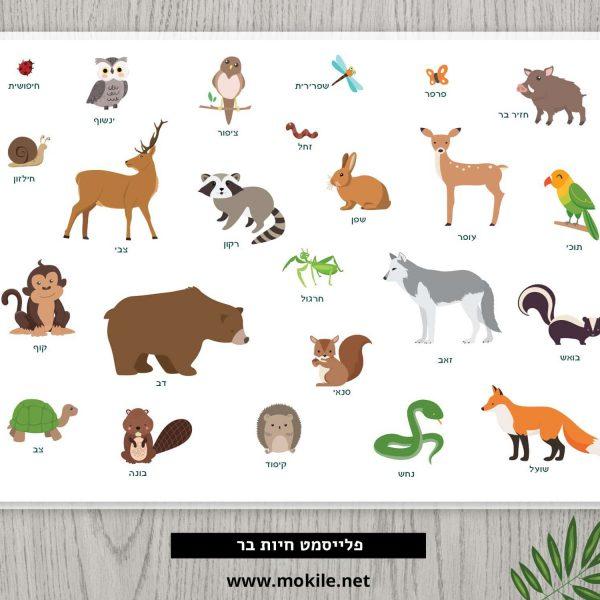 פלייסמט חיות היער