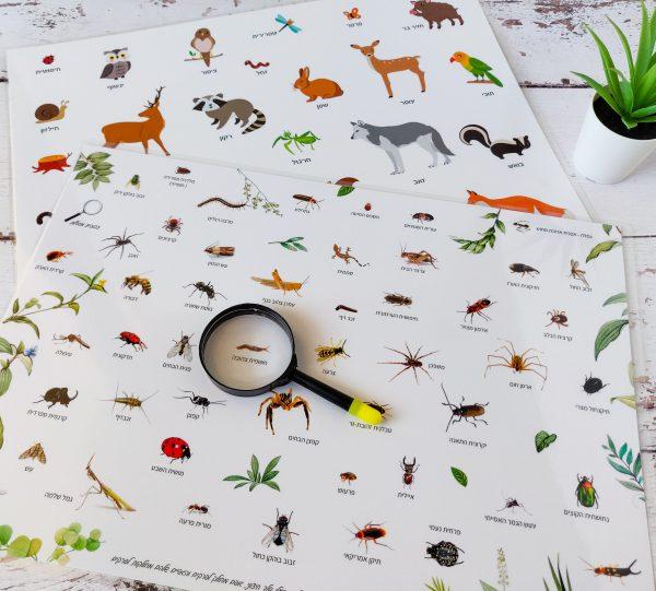 פלייסמט חרקים + פלייסמט חיות יער