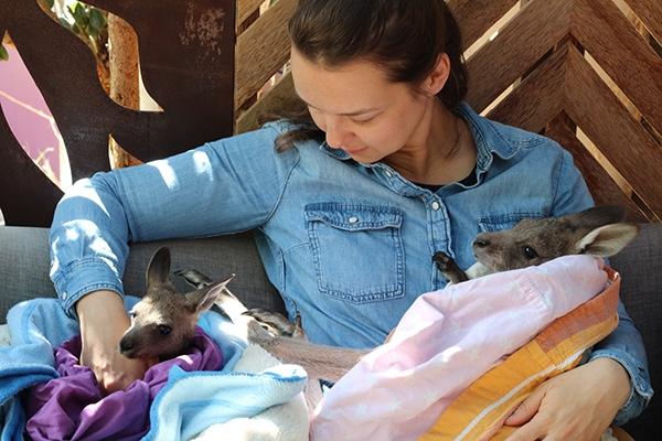 עם קנגורו תינוק | צילום: אנה בן שבת